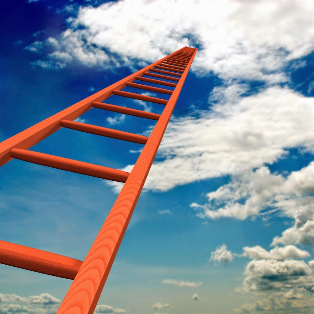The ladder of success – The Force By Luke